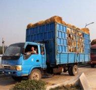 波普克生态肥料原料运输车